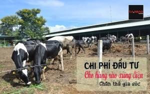 Chi phí đầu tư cho hàng rào xung điện chăn thả gia súc