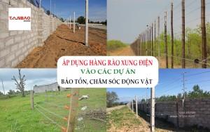 Áp dụng hàng rào xung điện vào các dự án bảo tồn, chăm sóc động vật
