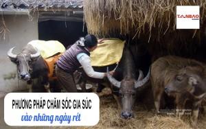 Phương pháp chăm sóc gia súc vào những ngày rét
