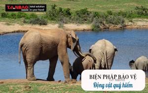 Biện pháp bảo vệ động vật quý hiếm