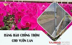 Giải pháp hàng rào xung điện chống trộm cho vườn lan