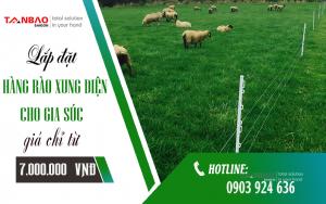Lắp đặt Hàng rào xung điện cho gia súc giá chỉ từ 7.000.000 đ